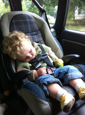 Harvey sleeping in the car holding an apple