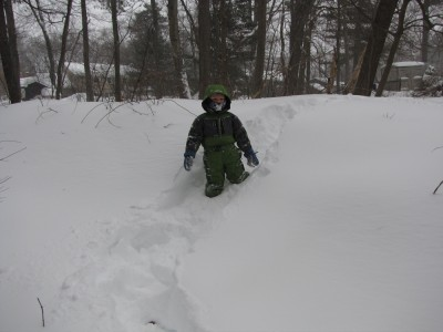 Harvey following my trail through deep snow