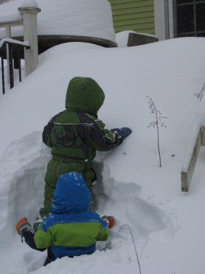 Harvey and Zion trying to make their way up the back steps, which are covered in three feet of snow