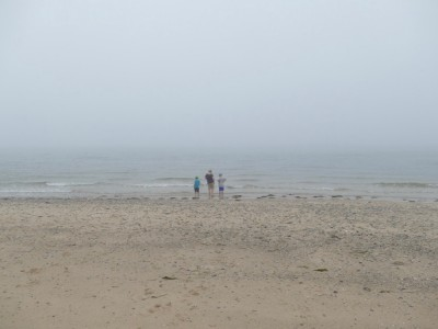 the boys looking at the ocean on a foggy beach