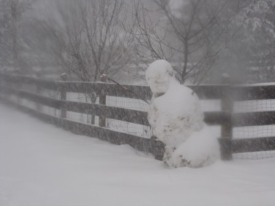 our snowman through the blizzard