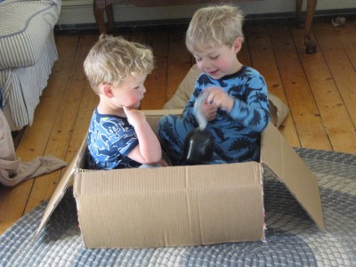 Zion and Lijah playing in a (small) box
