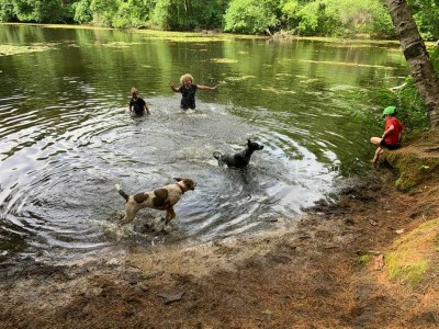 the boys splashing in the Old Reservoir with the dogs