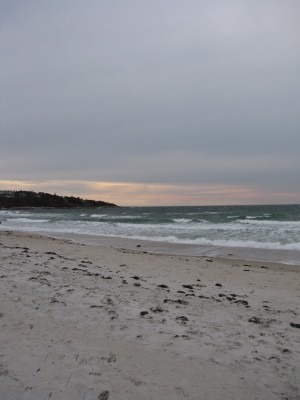 pinkish afternoon light over the beach