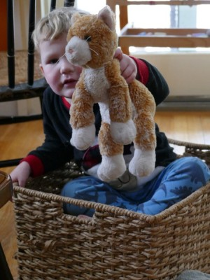 Lijah sitting in a basket holding up a toy cat