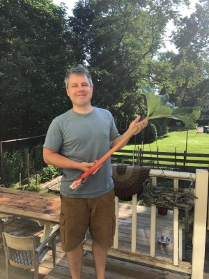 me holding a giant stalk of rhubarb