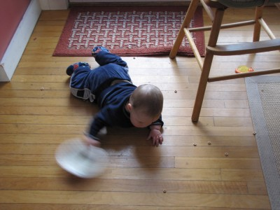 Harvey on the floor with Cheerios