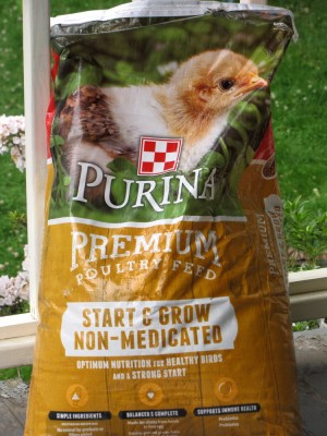 a bag of chick starter feed on our porch