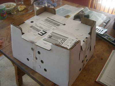 chicken mailing box