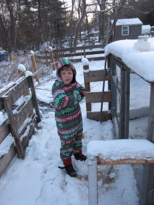 Harvey by the chicken coop in his PJs
