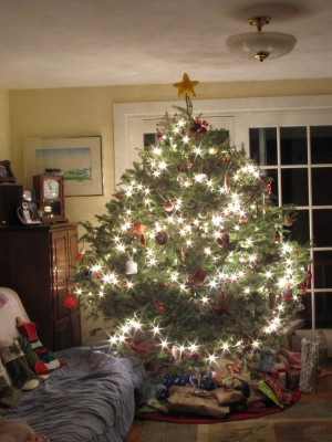 our wide christmas tree shining late on christmas eve