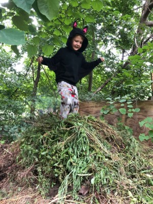 Lijah jumping on top of a big pile of weeds