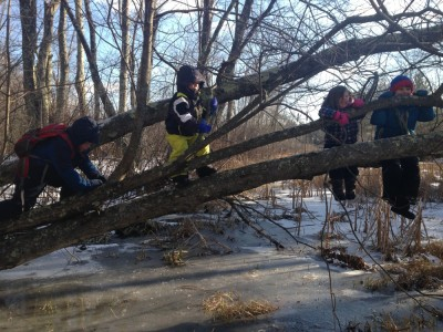 Harvey, Zion, Hendrick, and Eliza climbing a fallen tree above a frozen stream