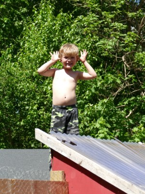 Elijah making a face from atop the chicken coop