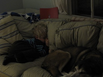 Zion and Rascal sleeping on the couch