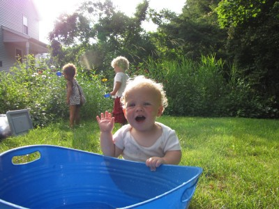 Zion at the water tub with Harvey and Nisia watering behind him