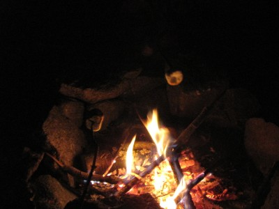 marshmallows over the fire in the dark