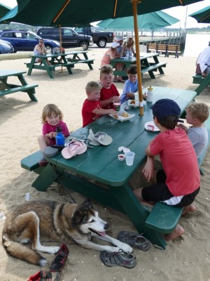 the kids sitting around a picnic table, Rascal lying in the shade under it
