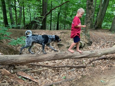 Zion and Blue walking across a log over a big depression