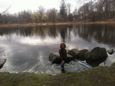 Zion wading in a pond
