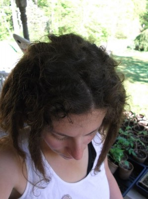 my dreads from the top at 3 weeks