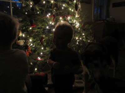Lijah silhouetted against the Christmas tree lights and dawn breaking through the window.