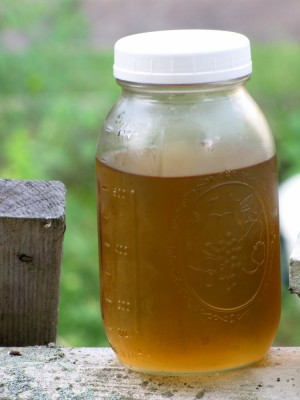 an almost-full quart of elderflower syrup
