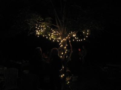 in the middle of the dark party, a tree lit up with Christmas lights