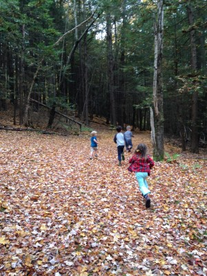 the boys and friends running into the fall woods