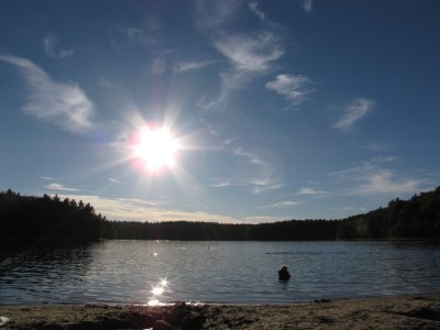 Harvey in the nearly empty waters of Walden pond