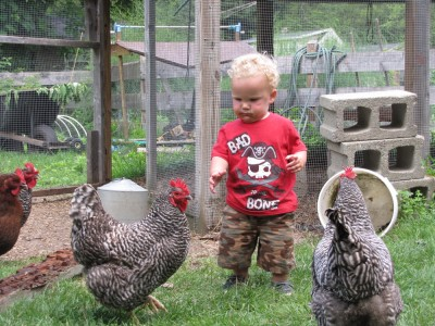 Lijah amongst the chickens by the chicken coop, in a 'bad to the bone' t-shirt