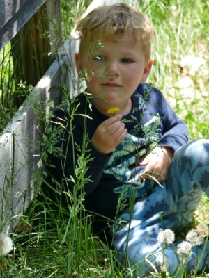 Lijah sitting against the fence holding a dandilion