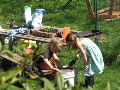 Harvey and Taya getting ready to pot up tomato seedlings