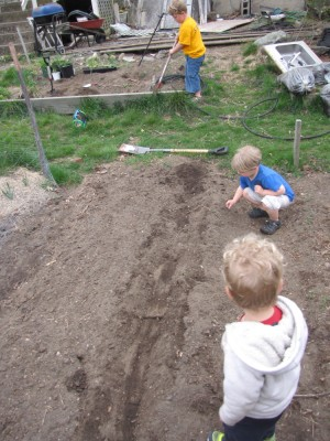 the boys helping in the garden
