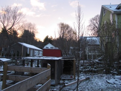 Snow on the yard and chicken coop at dawn