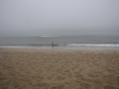 Harvey playing in the ocean waves on the foggy beach