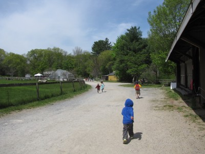 Harvey, Zion, Taya, and Isaac running along the farm road