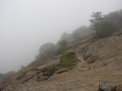 a foggy trail along the side of the mountain
