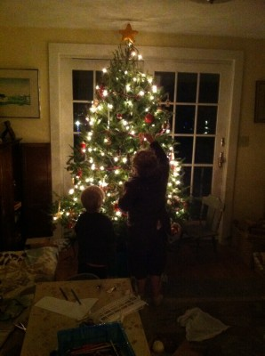 Harvey and Zion putting ornaments on the tree, illuminated by the lights