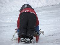 Harvey pushing the runner sled on the street, viewed from behind
