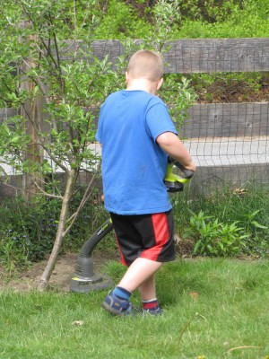 Harvey using the string trimmer