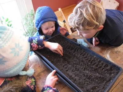 Harvey, Zion, and Taya planting onion seeds at the kitchen table