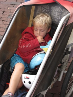 Zion snoozing in the bike trailer