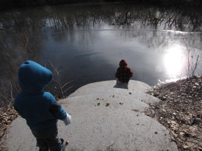 Zion checking the very thing ice on Alewife Brook