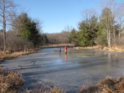 Harvey and Zion far away on a frozen pond among the reeds