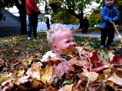 Lijah in a leaf pile; the ocean just barely visible behind him