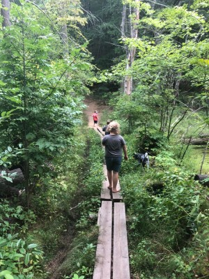 the boys walking across a boardwalk in a jungly patch of woods