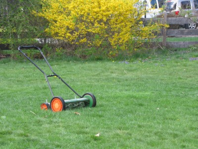 the mower in the lawn