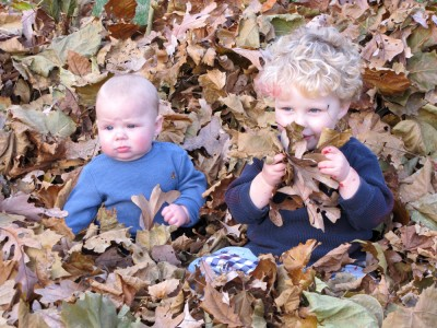 Harvey and Zion playing in the leaf pile