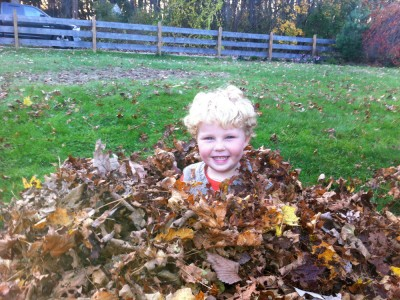 Harvey up to his neck in a leaf pile
